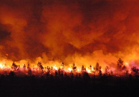 Réduire le nombre d'incendies grâce aux cigarettes R.I.P