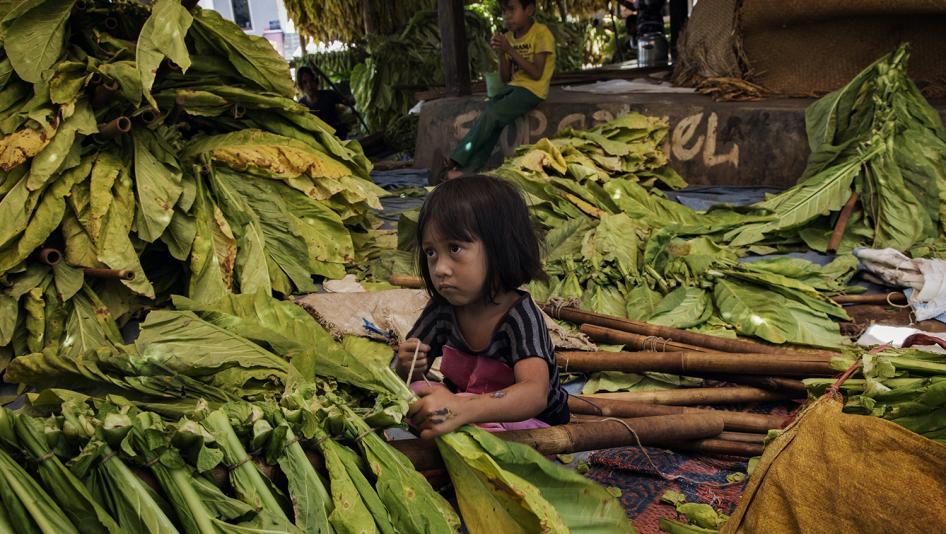 maladie-tabac-vert-enfants-indonesie