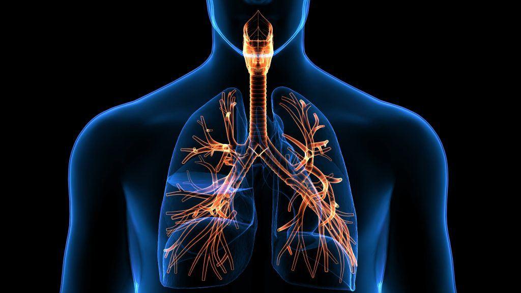 Tabac : des risques spécifiques sur l'appareil respiratoire
